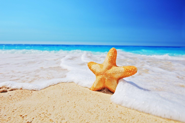 ساحل شنی درخشان