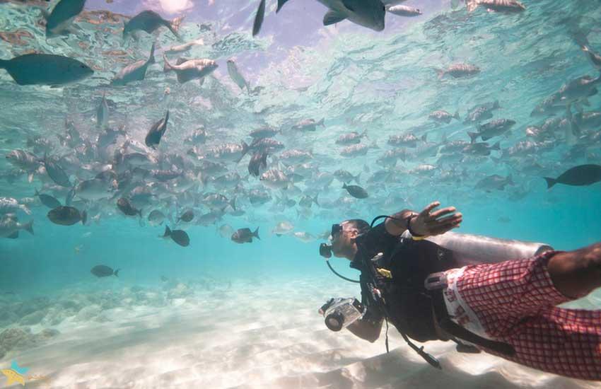 تور مالدیو | بنانا ریف