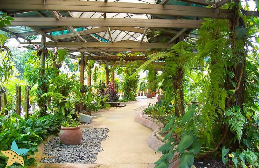 باغ گیاهشناسی پردانا