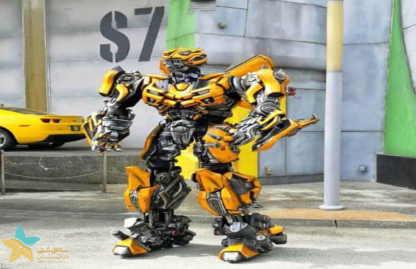 Meet The Bumblebee Transformers