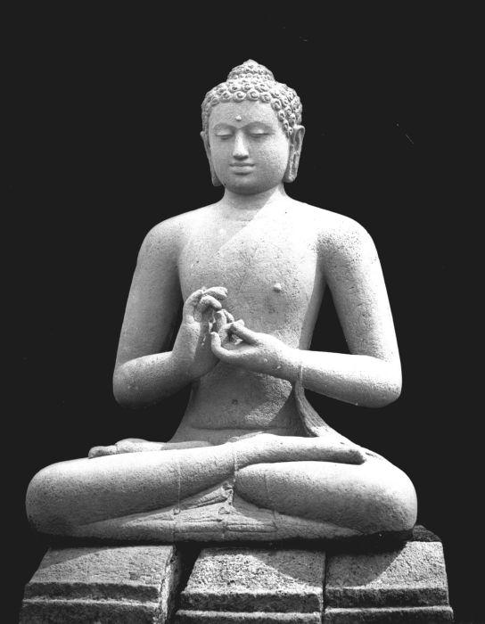 Borobudur Temple (13) statues
