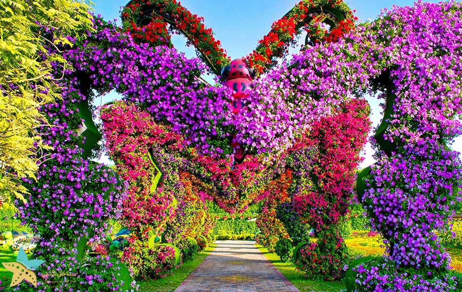 باغ معجزه دبی