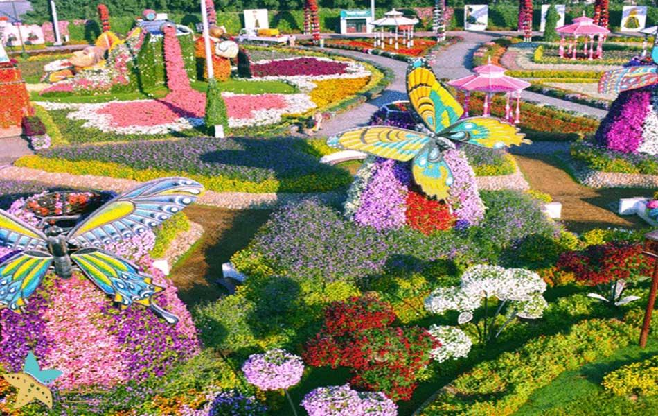 پاساژ پروانه باغ معجزه