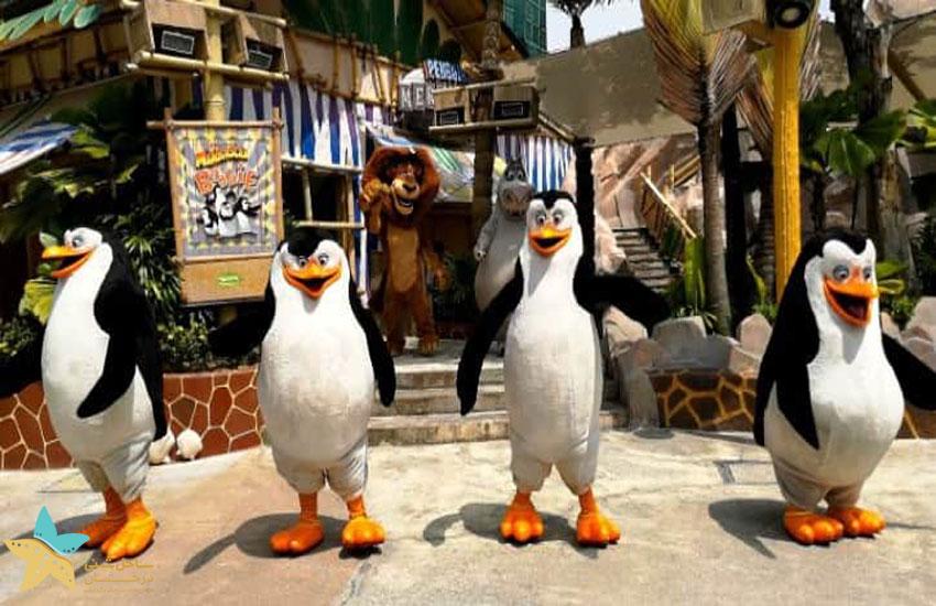 Madagascar Boogie