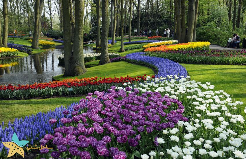 باغ اروپا در کشور هلند