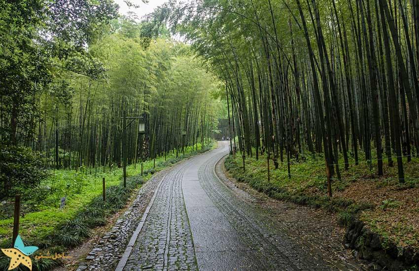 طبیعت هانگزو - جاذبههای گردشگری چین