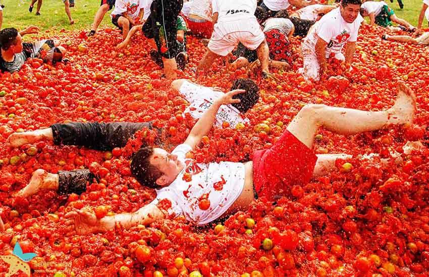فستیوال گوجه اسپانیا - فستیوالهای غذای دنیا