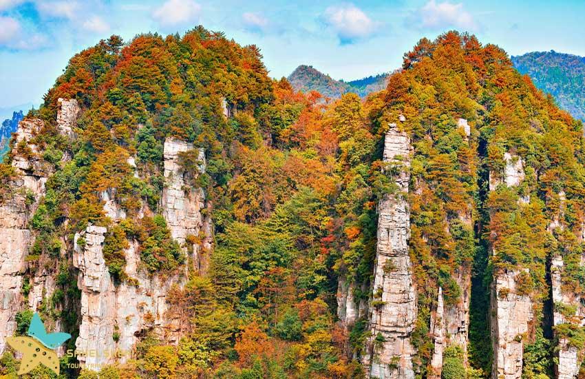 پارک ملی ژانگ جیاجی