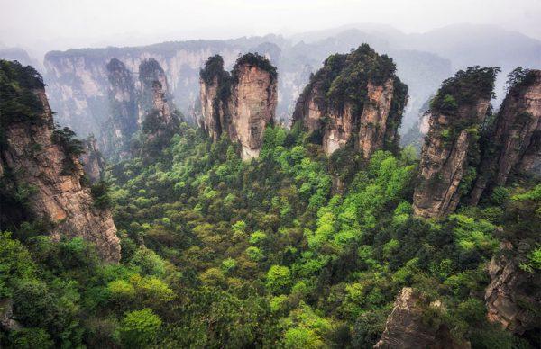ژانگ جیاجی چین