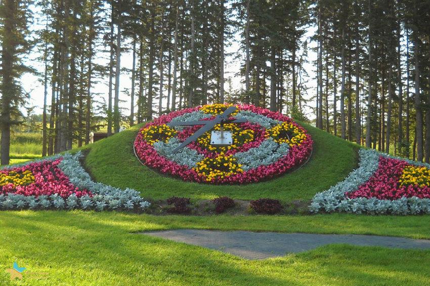 ساعت گل پارک صلح کانادا