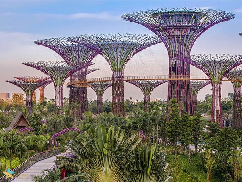 گاردنز بای د بی جاذبههای گردشگری سنگاپور