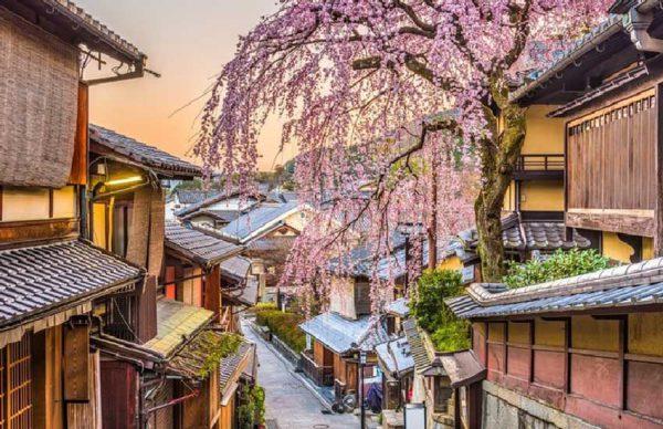 راهنمای سفر به کیوتو: از فرهنگ مردم تا جاذبههای گردشگری کیوتو