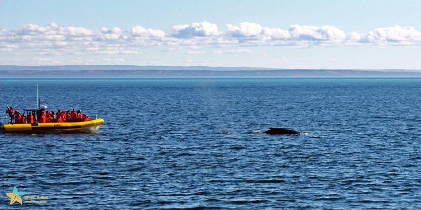 پارک دریایی کانادا